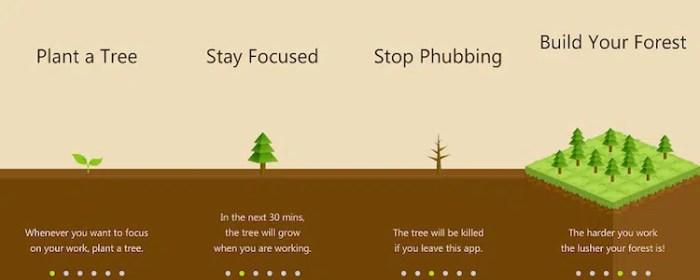 Image result for forest app