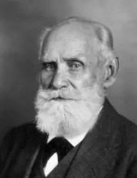 An image shows the iconic psychologist Ivan Pavlov who made Balanced Achievement's list of history's most influential psychologists.