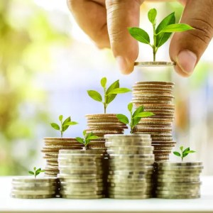 An image shows a number of small plants grown on top of stacks of coins to illuminate how mindful money management can help us achieve our financial goals.