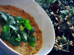 cauliflower-squash-stew-vegan-recipe