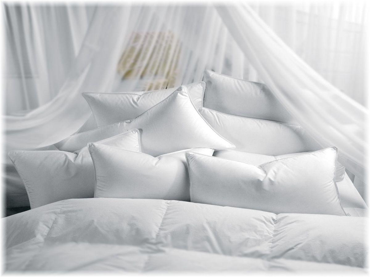 Pillow Talk Choosing a Pillow for the Best Nights Sleep
