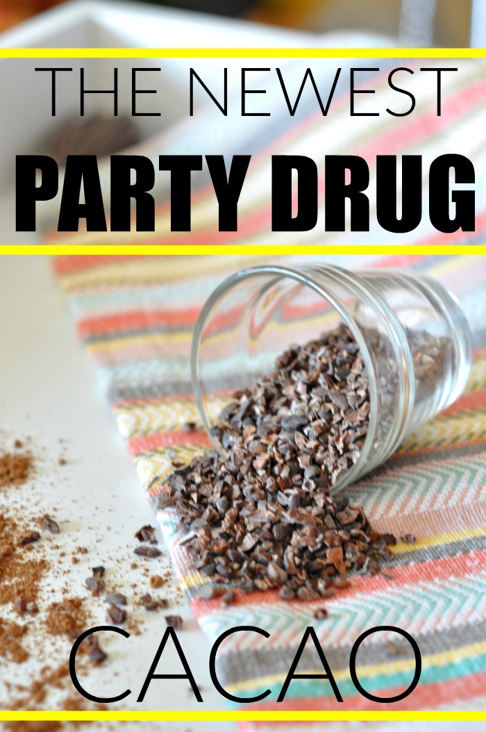 cacao-as-a-party-drug