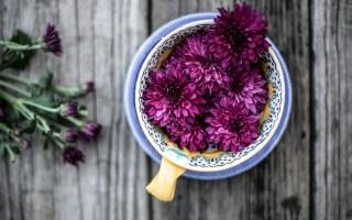 flower-essence