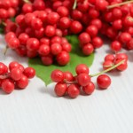 Balance Your Hormones And Protect Your Adrenals With Schisandra