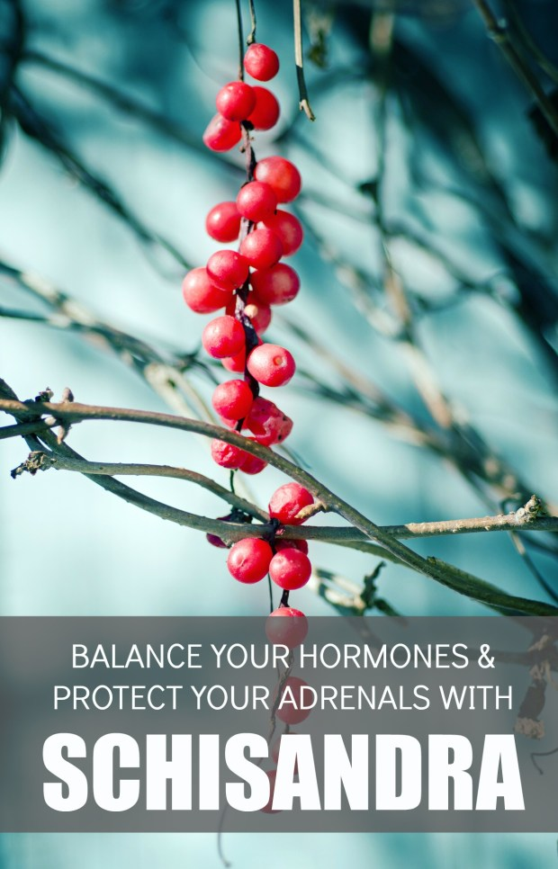 balance-your-hormones-and-protect-your-adrenals