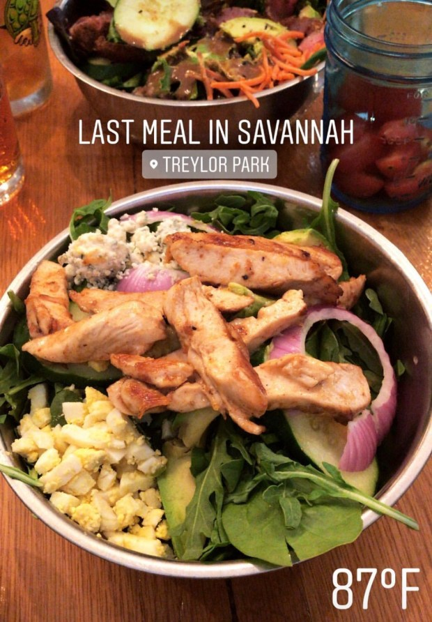 travel guide to savannah