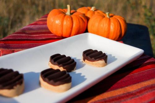 Healthy Peanut Butter Chocolate Pumpkin PB 4