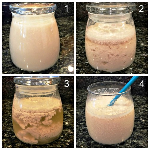 Almond Milk Kefir How to Recipe Numbered