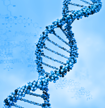 DNA Support