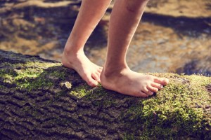 Walking Bare foot on a tree trunk