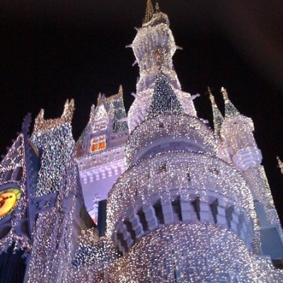 A Magical Disney Christmas Experience