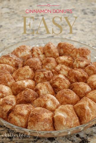 The World's Easiest Cinnamon Donut Holes. No oil. Bake in the oven. via BalancingMotherhood.com