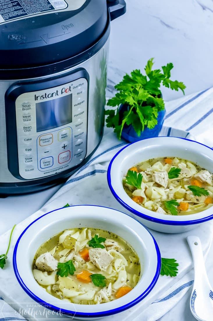 How long frozen chicken soup cook