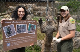 The OC Zoo, Orange County Parks