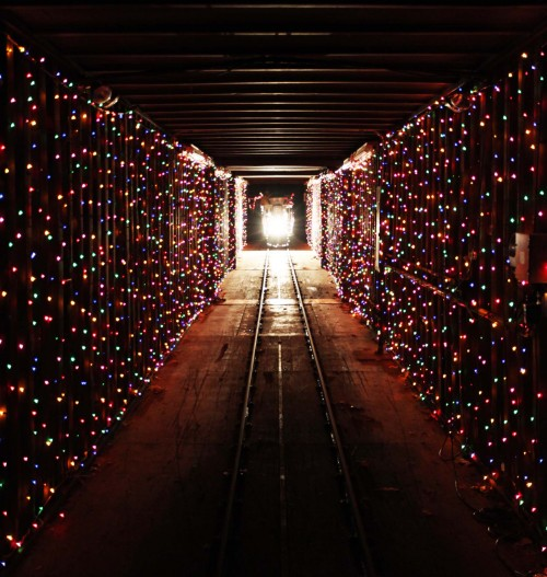 christmas train in the tunnel of lights - Christmas Light Train
