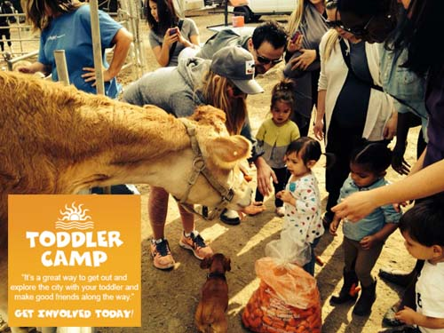 Toddler Camp Petting Zoo