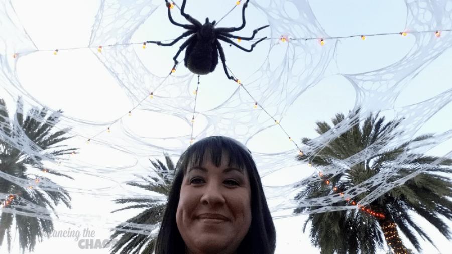 Legoland Spiders in fun town