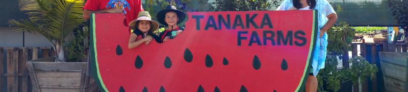 Tanaka Farms Melon Tours