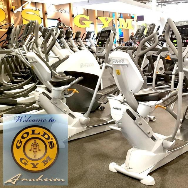 Have you ever been to a goldsgym? AD Today Ihellip