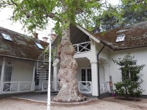 Balatonlelle szállás - Meiszter Villa