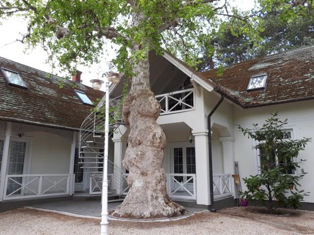 Meiszter Villa Balatonlelle