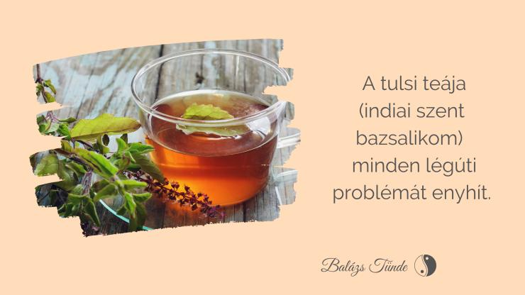 A tulsi teája (indiai szent bazsalikom)  minden légúti problémát enyhít.