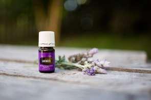 web-lavender-3