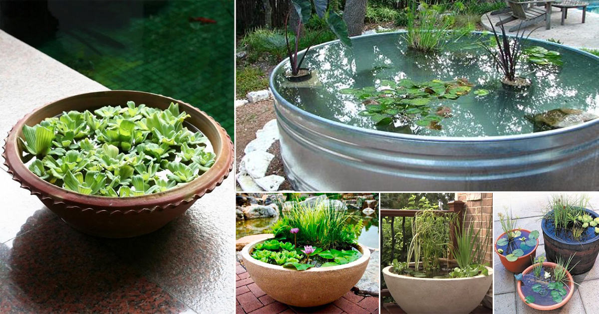 13 peaceful diy container