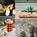 14 Diy Wood Succulent Planter Ideas Balcony Garden Web