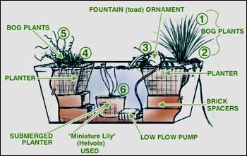 Pond In A Pot Create A Container Water Garden Balcony Garden Web