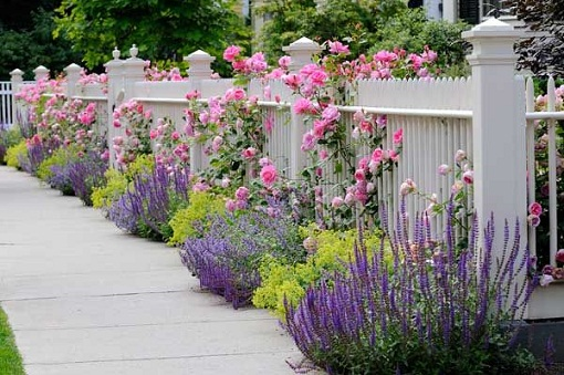 Landscaping With Lavender 7 Garden Design Ideas