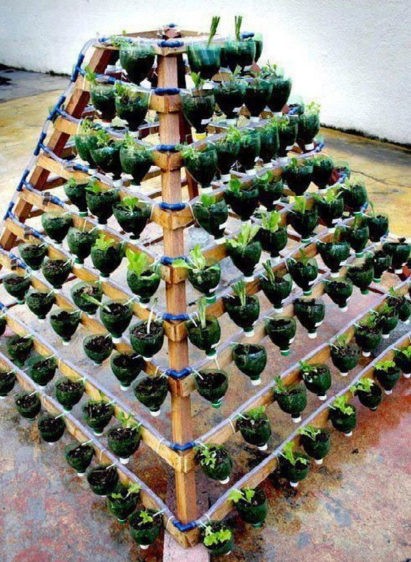 13 Plastic Bottle Vertical Garden Ideas Soda Bottle Garden