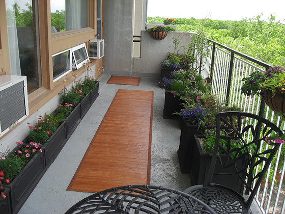 18 Balcony Gardening Tips To Follow Before Setting Up A Balcony
