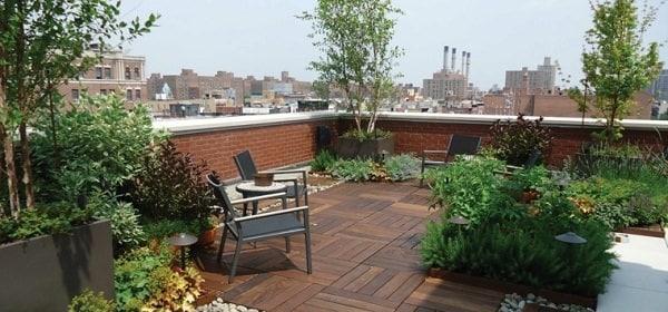 How To Improve Privacy Of Rooftop Garden Rooftop Garden Ideas