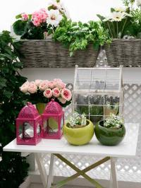 10 Tips to Start a Balcony Flower Garden   Balcony Garden ...