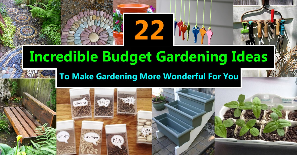 22 Incredible Budget Gardening Ideas Garden Ideas On A Budget