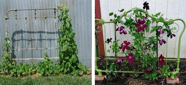 17 Best Upcycled Trellis Ideas For Garden Cool Trellis Designs