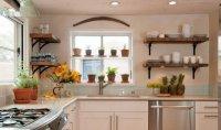 Best Kitchen Plants | Plants For Kitchen To Decorate It ...