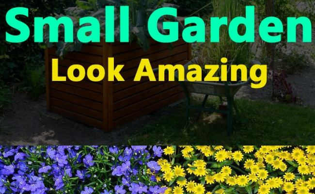 5 Garden Design Ideas To Make A Small Garden Look Amazing