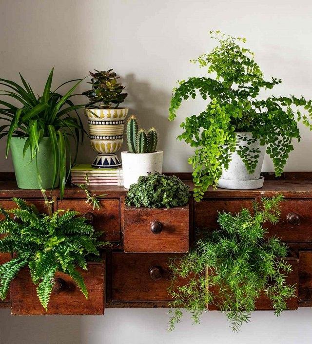 15 Brilliant DIY Vertical Indoor Garden Ideas To Help You ...
