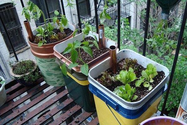 14 Best DIY Self Watering Container Garden Ideas Balcony Garden Web