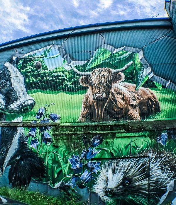 Glasgow City Centre Murals, Scotland June'18