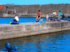 Fishing, Harbour, Hayakawa, Kanagawa, Japan