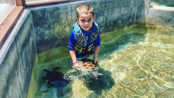Cayman Turtle Farm best things to do on grand cayman
