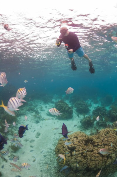 Grand Cayman snorkeling at Rum Point best things to do on grand cayman