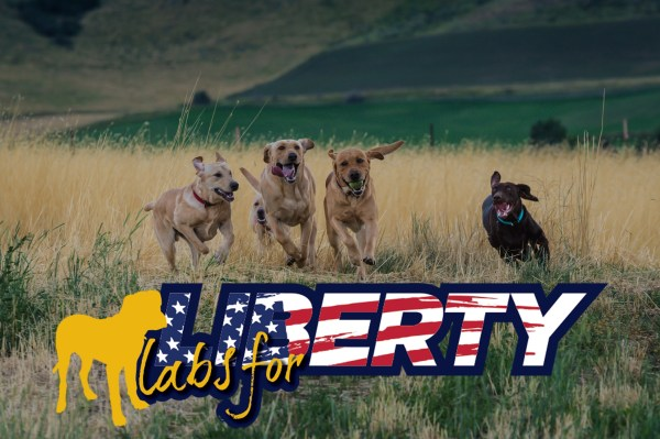 Service animals - Labs For Liberty banner