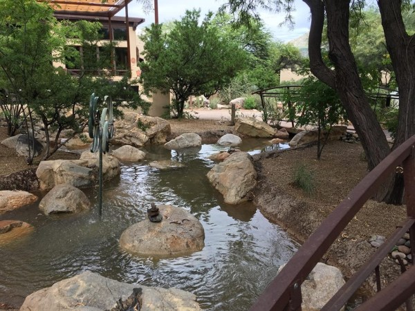 Hyatt Miraval creek
