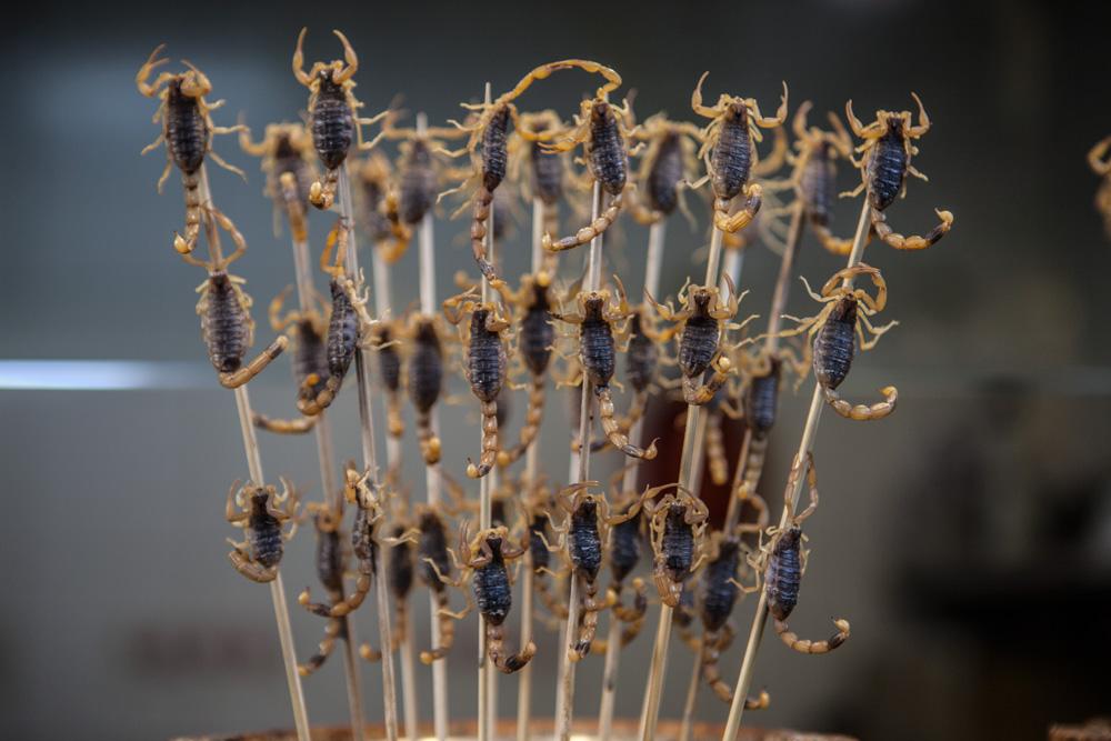 Peking-Skorpione-am-Spiess