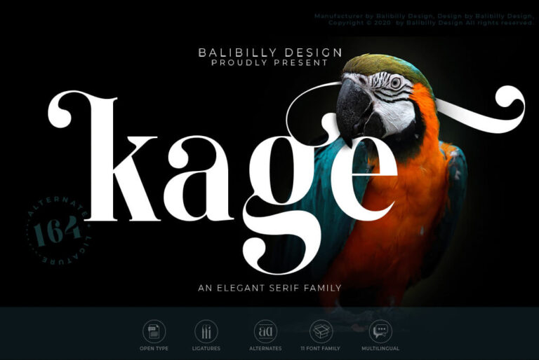 Preview image of Kage Serif Typeface Demo Version