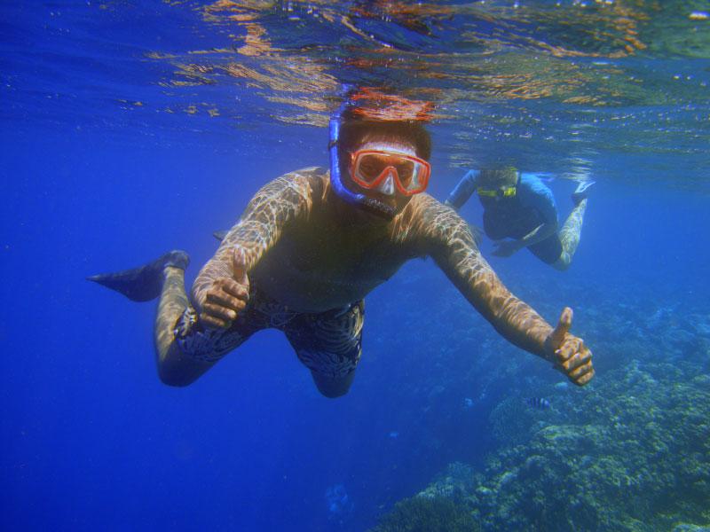 Menjangan Island Snorkeling Tour
